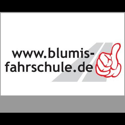 Logo: Torsten Blum Fahrschule
