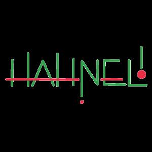 Logo: Fahrschule Hahnel