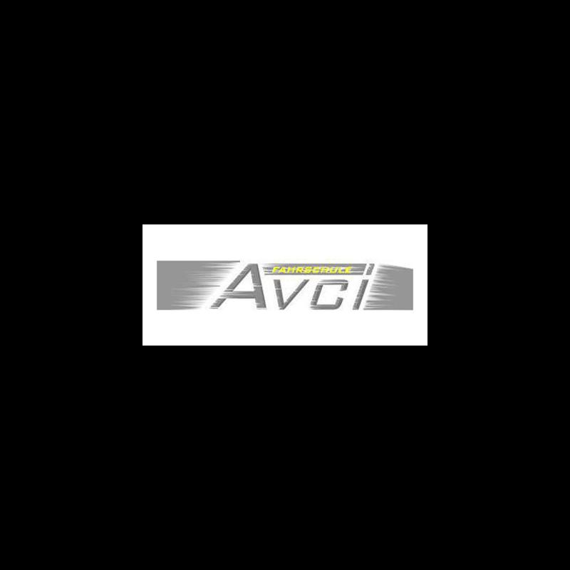Logo: Ferien Fahrschule Avci