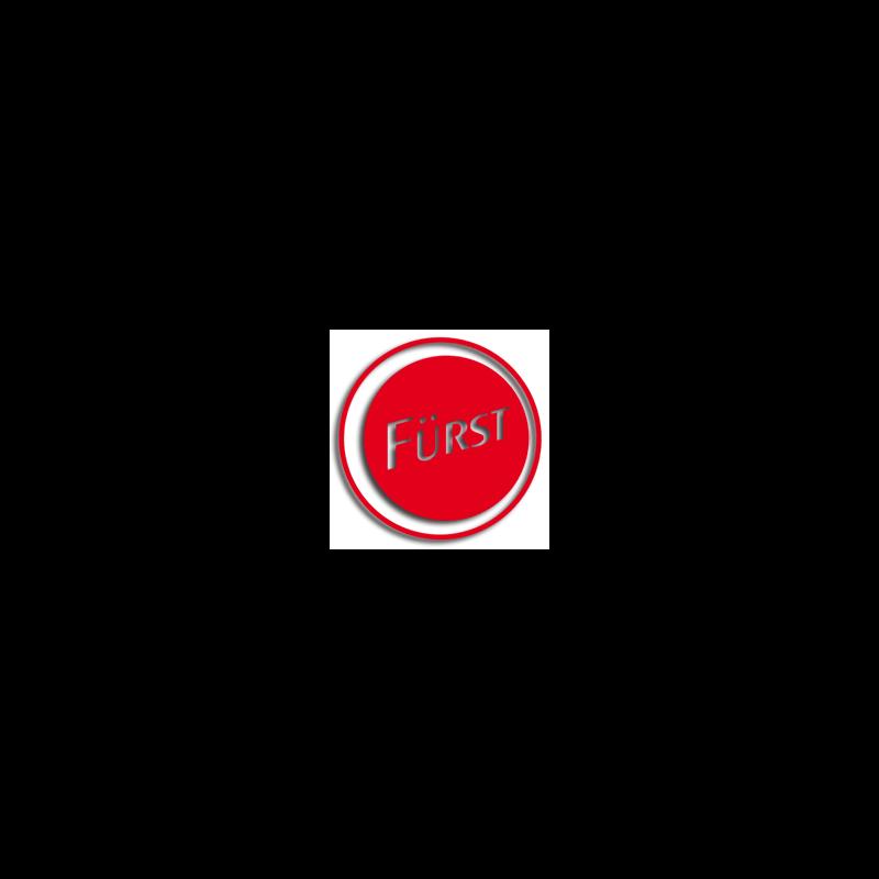 Logo: Fahrschule Fürst