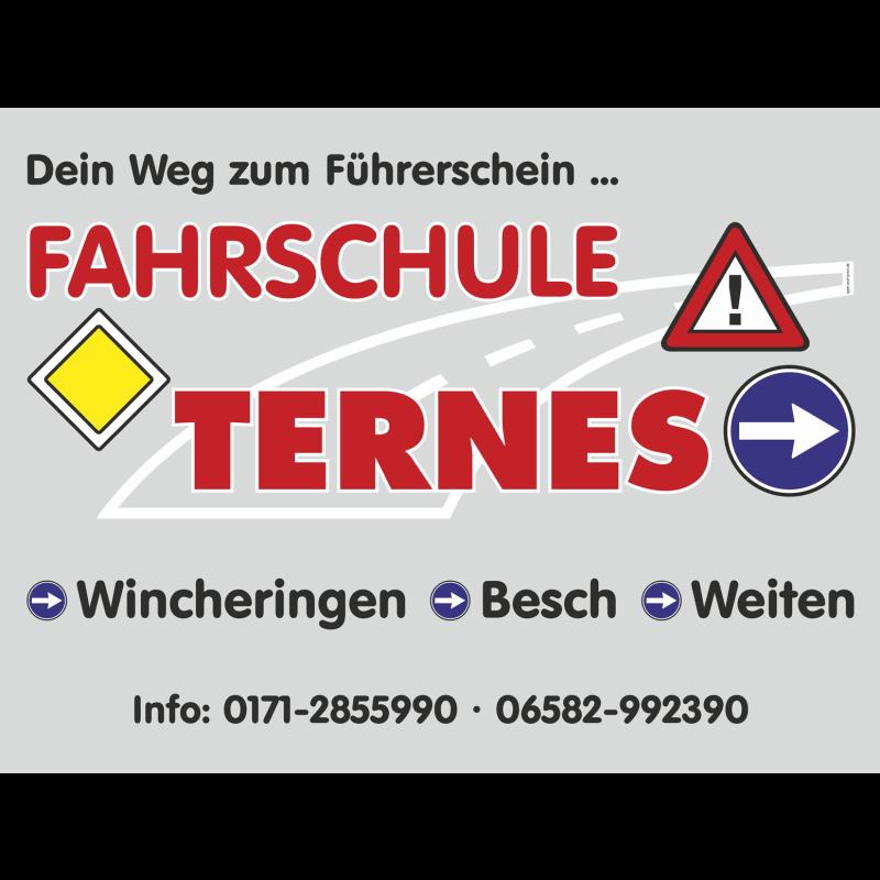 Logo: Fahrschule Ternes