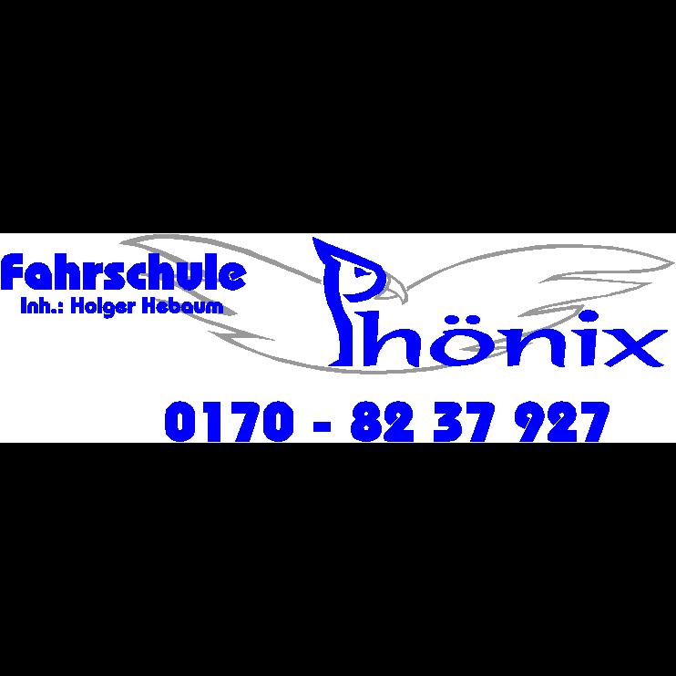 Logo: Fahrschule Phönix