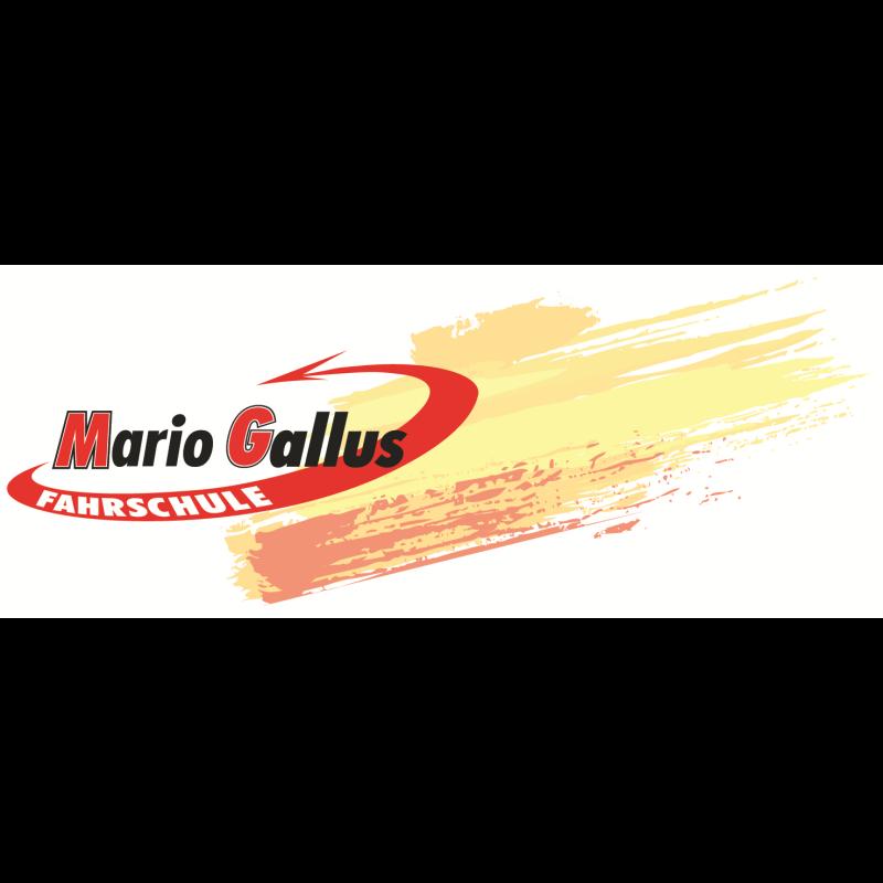 Logo: Gallus Mario Fahrschule