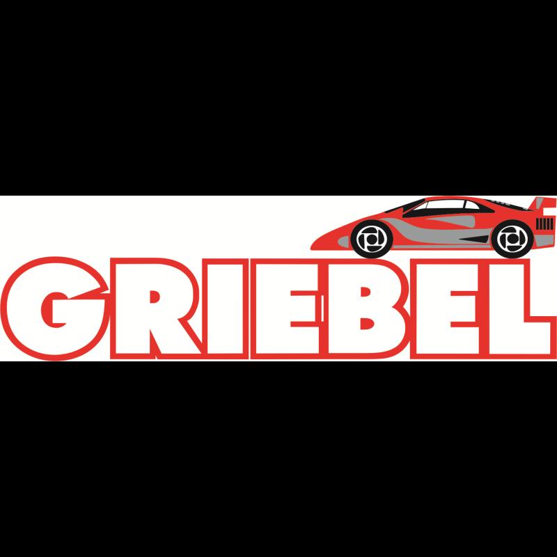 Logo: Fahrschule Griebel