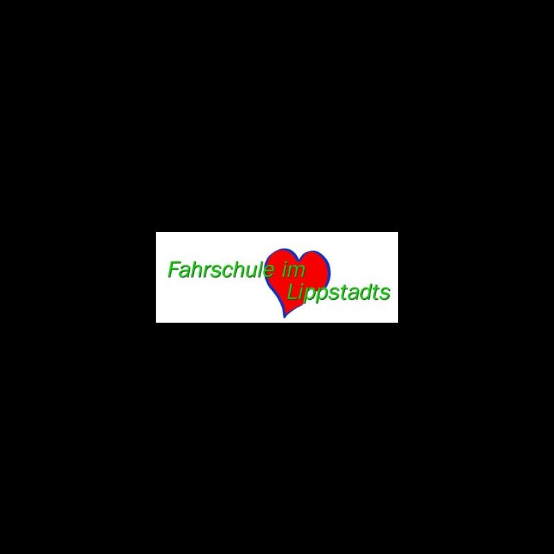 Logo: Fahrschule Schmidt