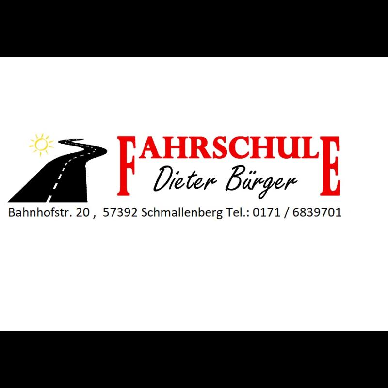 Logo: Fahrschule Dieter Buerger