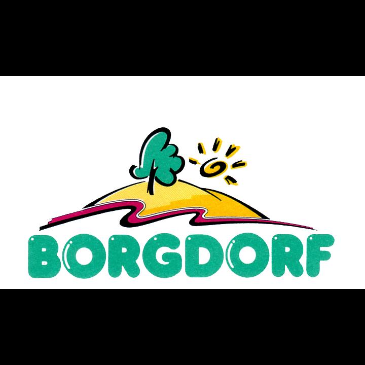 Logo: Fahrschule Borgdorf