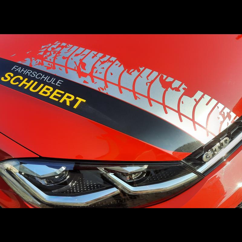 Logo: Fahrschule Frieder Schubert