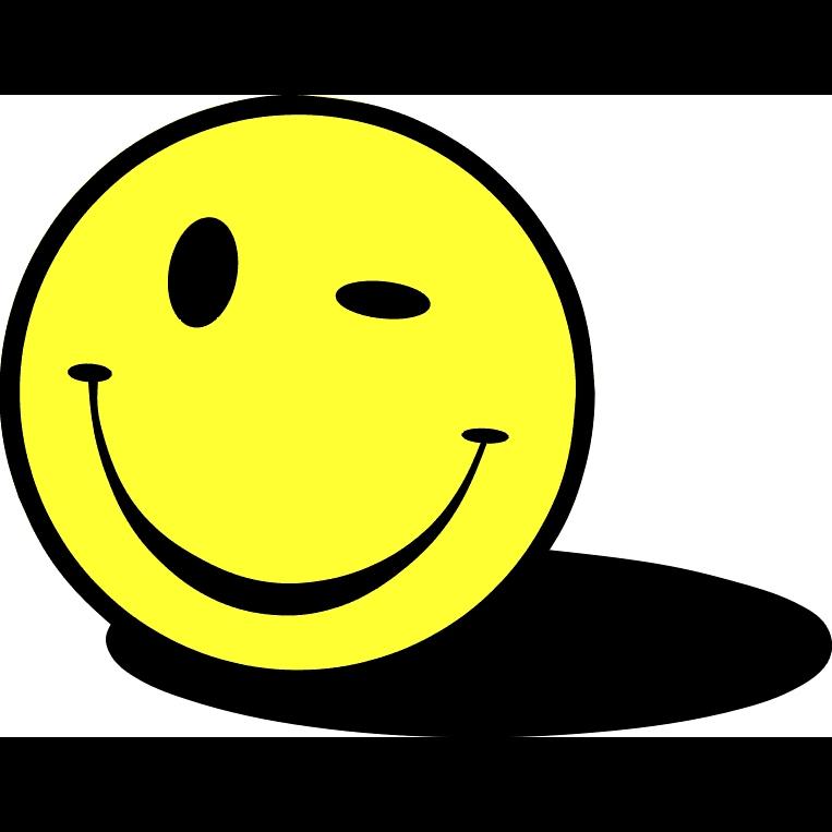 Logo: Smile'n Drive Fahrschule