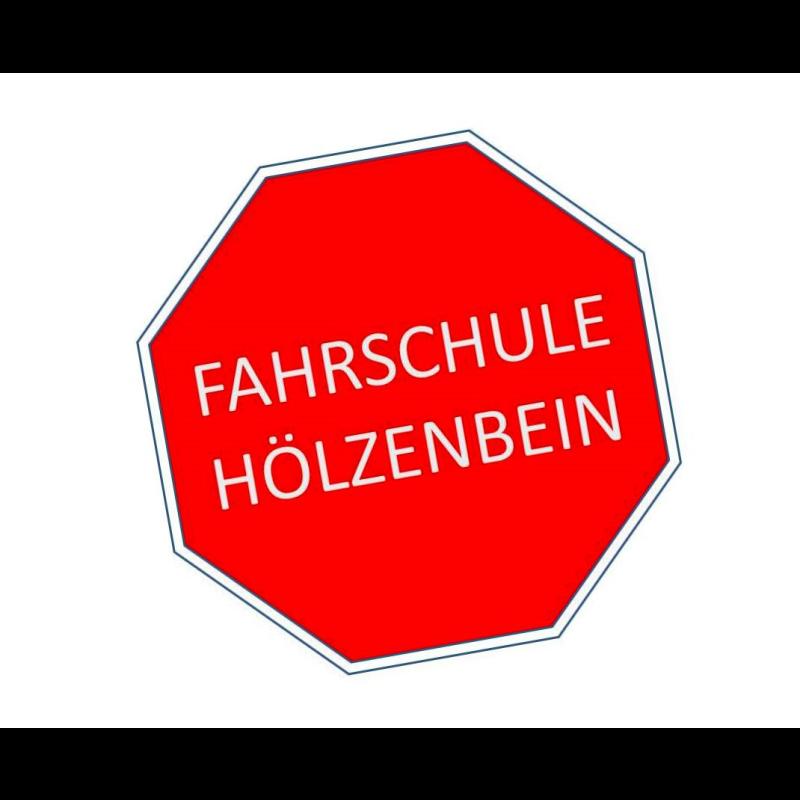 Logo: Fahrschule Hölzenbein GmbH
