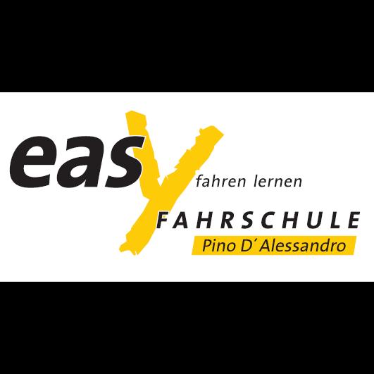 Logo: Fahrschule Easy fahren lernen
