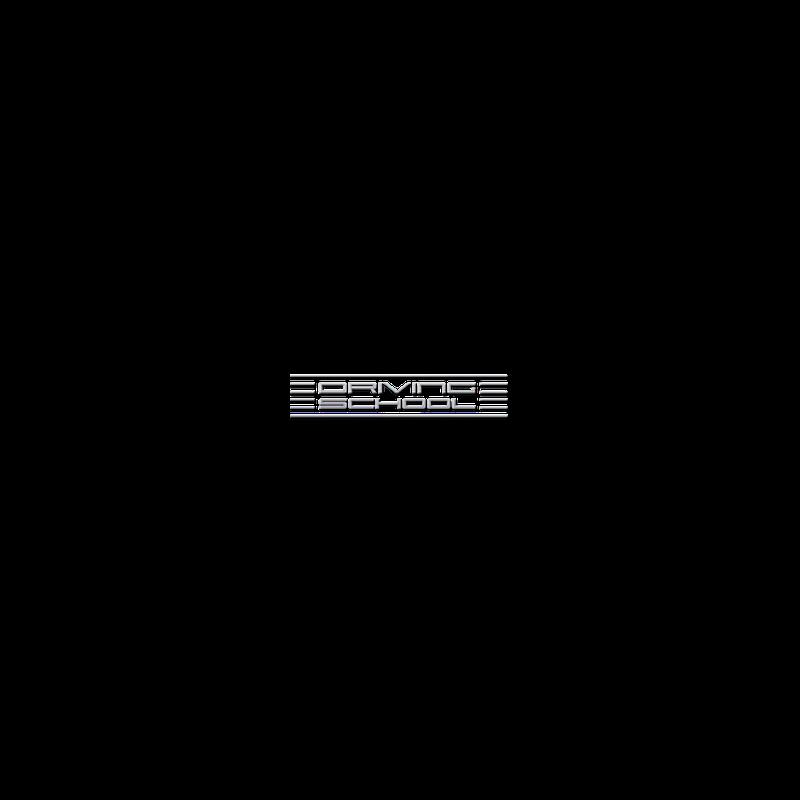 Logo: Driving School