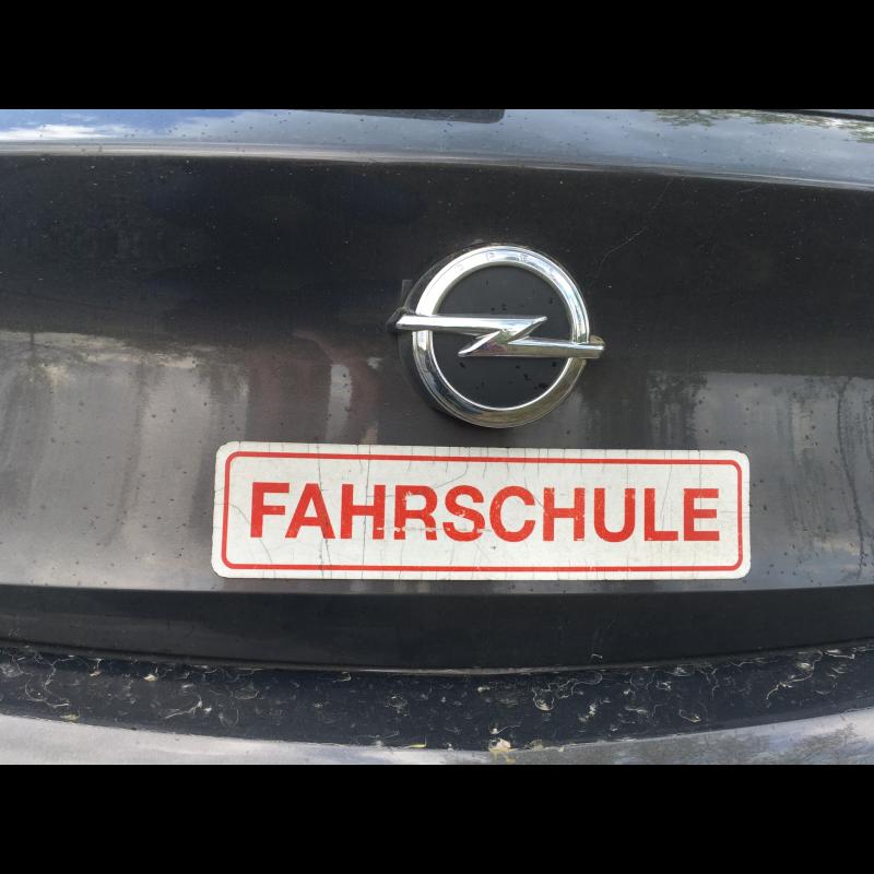 Logo: Fahrschule Riebling