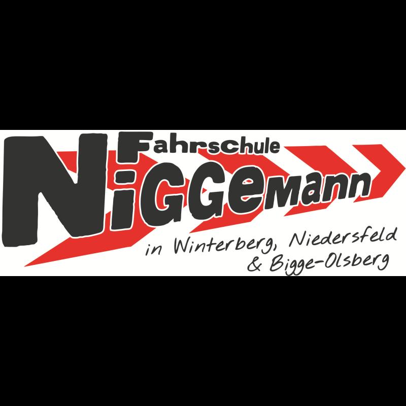 Logo: Fahrschule Niggemann