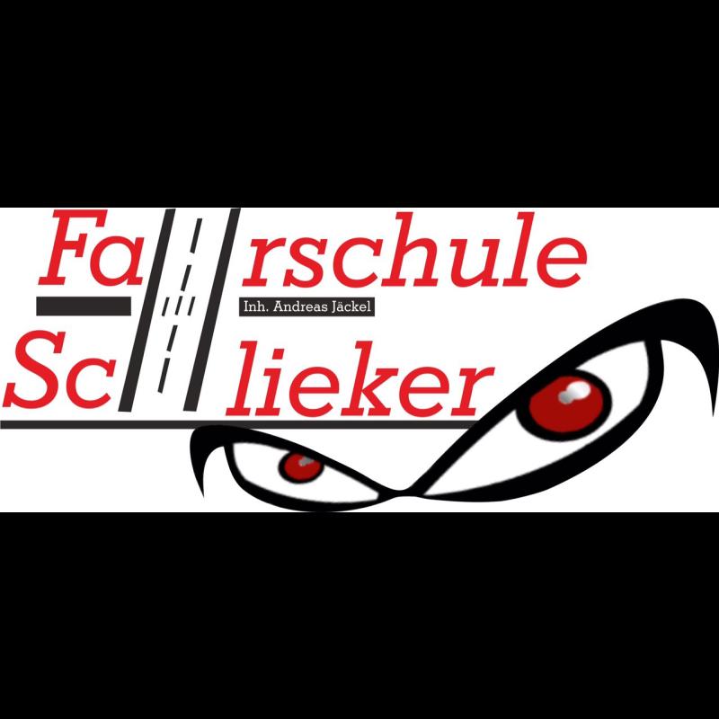 Logo: Fahrschule Schlieker