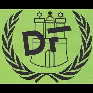 Logo: Fahrschule Dein Führerschein Hamburg