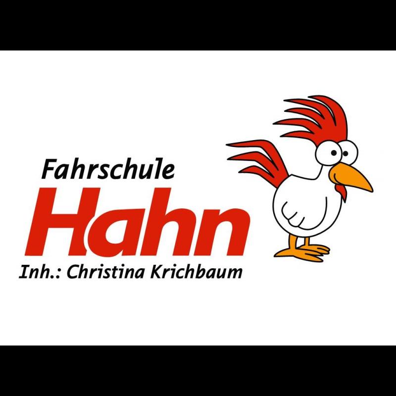 Logo: Fahrschule Hahn