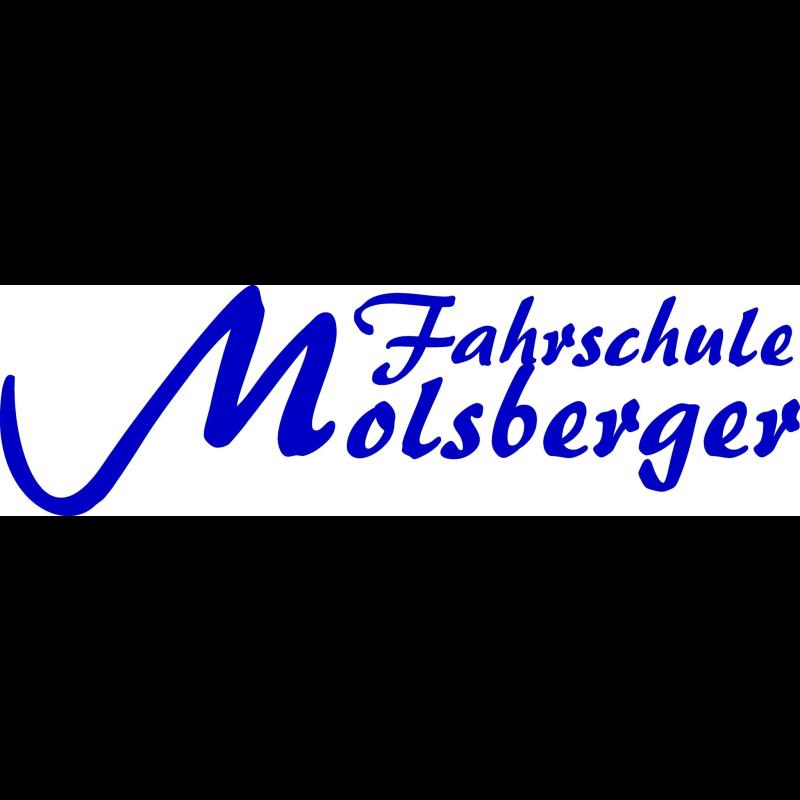 Logo: Fahrschule Molsberger