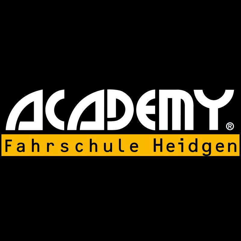 Logo: Fahrschule Dennis Heidgen